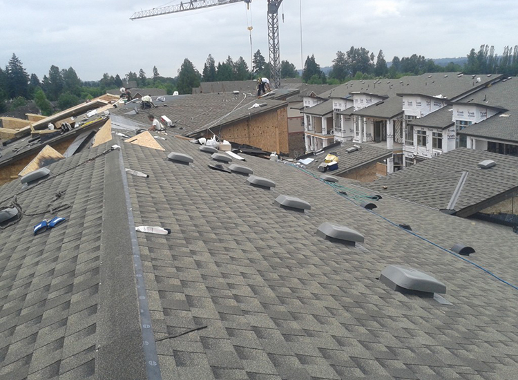New Roof Construction on Cedar Downs Condominiums in Pitt Meadows, BC: Sloped Roofing & Skylights