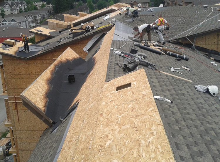 New Roof Construction on Cedar Downs Condominiums in Pitt Meadows, BC: Roofers