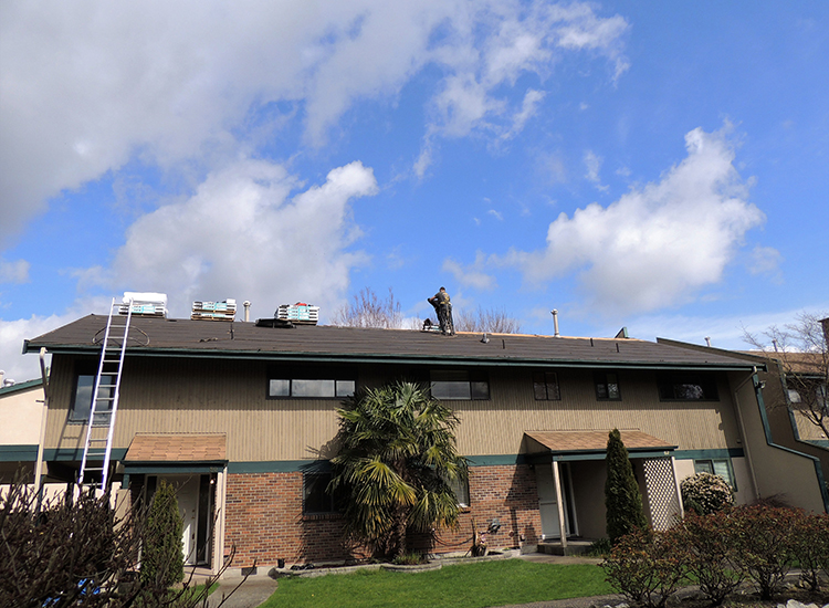 Re-Roofing Townhomes in Cloverdale, BC