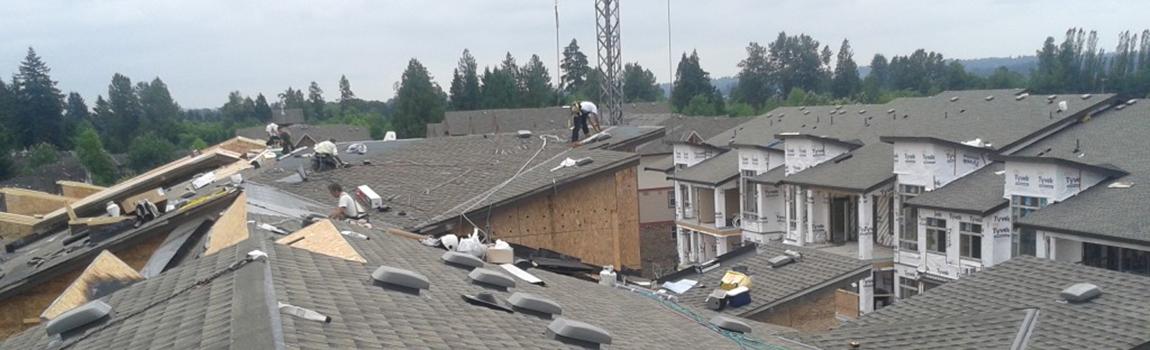 New Roof Construction on Cedar Downs Condominiums in Pitt Meadows, BC