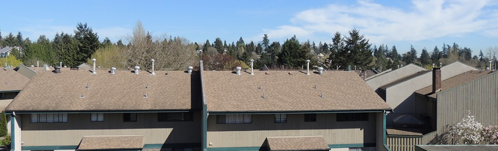 Re-Roofing Townhomes in Cloverdale, BC: Skyline