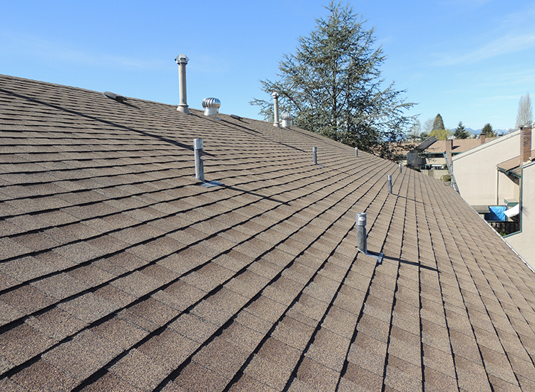 Re-Roofing Townhomes in Cloverdale, BC: Roof View