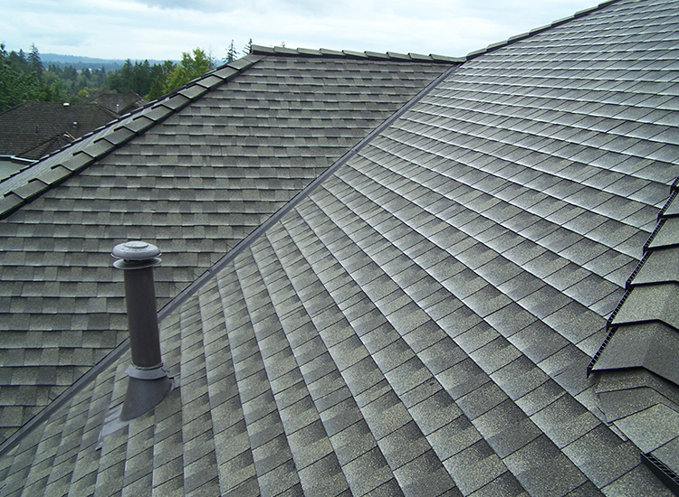 Re Roofing Single Family Home Surrey Bc Surlang Roofing