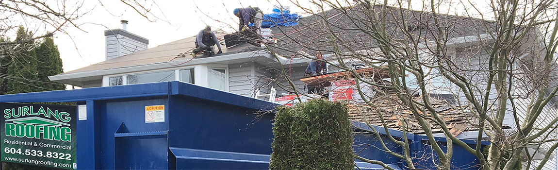 Cedar Roof Conversion