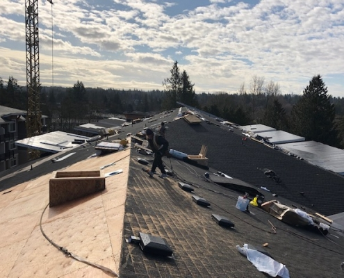 Brydon Crescent Roof Installation - Residential Roofing Projects